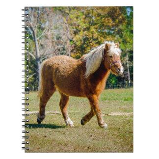 Pretty Shetland Pony Notebooks