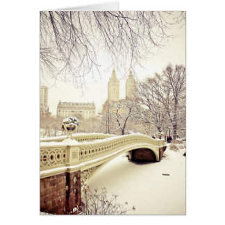 Pretty Snow - New York Holiday Card