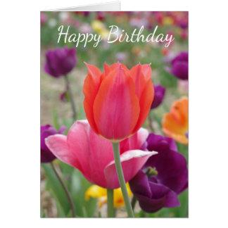 Pretty Spring Tulips Birthday Card
