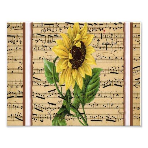 Pretty Sunflower On Vintage Sheet Music Photo Print