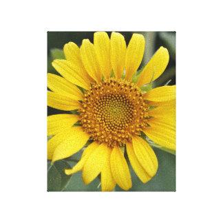 "Pretty Sunny Yellow Sunflower 8"" x 10"" Canvas Print"
