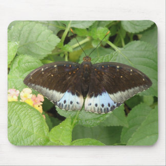 Pretty Tropical Butterfly Mousepad