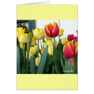 """""""Pretty Tulips in a Row"""" Greeting Card"""