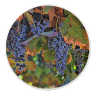 Pretty Vineyard Wine Country Knobs and Pulls