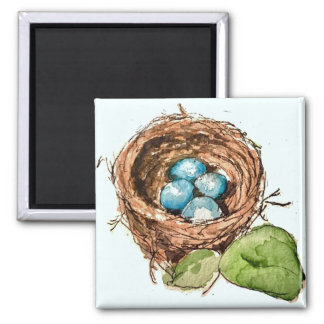 Pretty watercolor robin eggs nest magnet