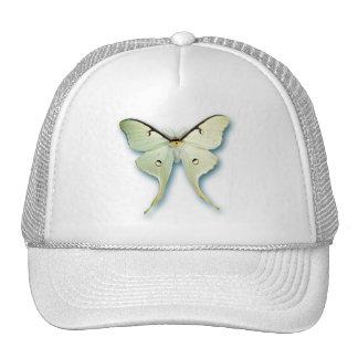 Pretty White Butterfly Design Hat