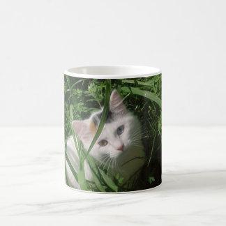 Pretty white cat in tall grass basic white mug