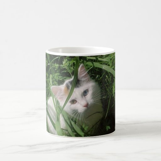 Pretty white cat in tall grass coffee mug