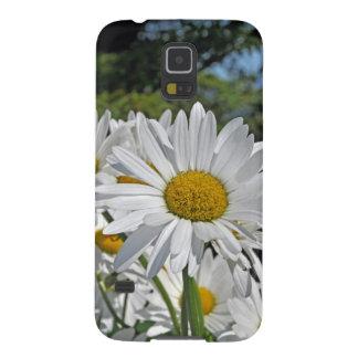 Pretty white daisy blossoms galaxy s5 cases