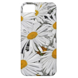 Pretty white daisy flower print iPhone 5 covers