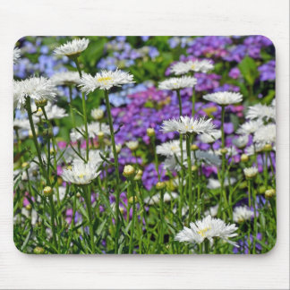 Pretty white daisy garden mouse pads