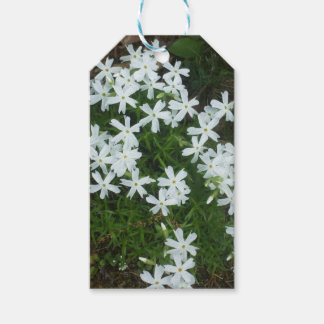 Pretty White Flowers Gift Tags