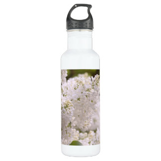 Pretty White Lilacs Photo 710 Ml Water Bottle