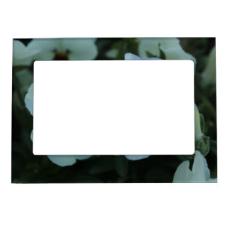 Pretty White Pansies Magnetic Picture Frame
