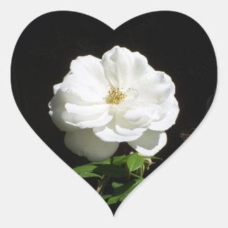 Pretty White Rose Heart Sticker