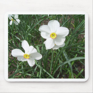 Pretty White Spring Flowers CricketDiane Mousepad