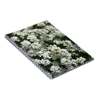 Pretty White Spring Flowers Photo Spiral Notebook