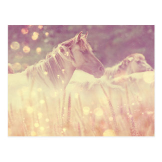 Pretty Wild Mustang Gold Sparkles Horse Postcard
