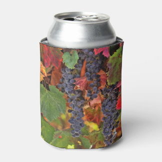 Pretty Wine Themed Beverage Can Cooler