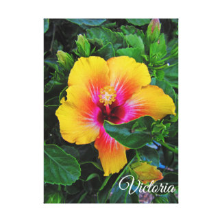 Pretty Yellow and Red Hibiscus Canvas Print