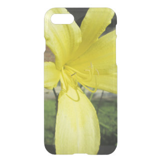 Pretty Yellow Lily Flower iPhone 7 Case