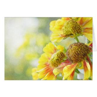 Pretty Yellow & Orange Helenium Flowers Greeting Card