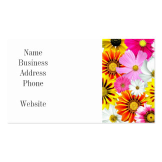 Pretty Yellow Pink White Flower Daisies Gifts Pack Of Standard Business Cards