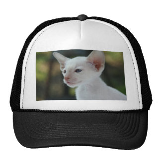 Pretty Young White Kitty Cat Hat