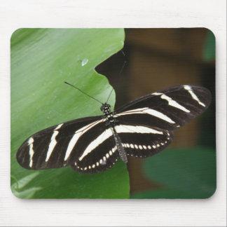 Pretty Zebra Longwing Butterfly Mousepad