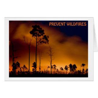 Prevent Wildfire Card