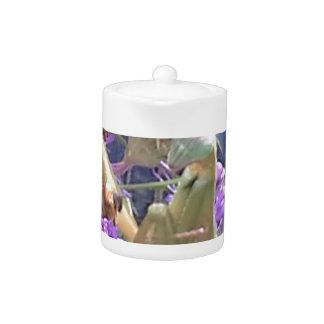 Preying Mantis  & Purple Cone Flowers