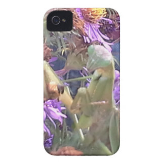 Preying Mantis  & Purple Cone Flowers Case-Mate iPhone 4 Case