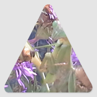 Preying Mantis  & Purple Cone Flowers Triangle Sticker