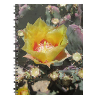 Prickly Pear Black Spined Spiral Note Book
