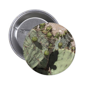 Prickly Pear Buds Pinback Buttons