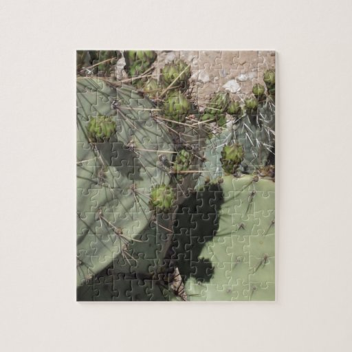 Prickly Pear Buds Jigsaw Puzzles
