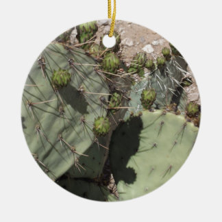 Prickly Pear Buds Round Ceramic Decoration