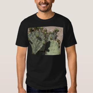Prickly Pear Buds Tshirts