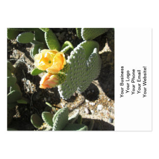 Prickly Pear Bunny Pack Of Chubby Business Cards