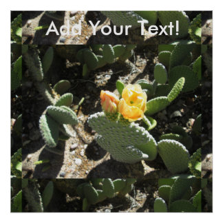 Prickly Pear Bunny Poster