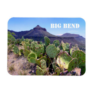 Prickly Pear Cactus Big Bend National Park Magnet
