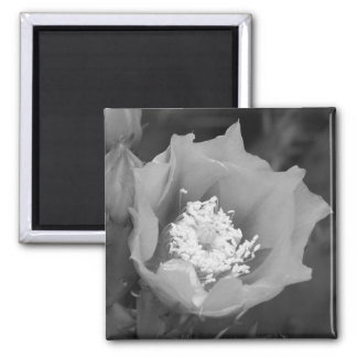 Prickly Pear Cactus Bloom Refrigerator Magnet