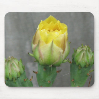 Prickly Pear Cactus Bloom Mouse Pad