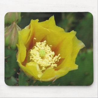 Prickly Pear Cactus Bloom Mouse Mat