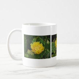 Prickly Pear Cactus Blooms Mugs