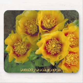 Prickly Pear Cactus Blossoms Mousepad