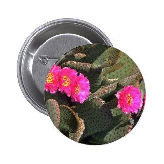 Prickly Pear Cactus Button