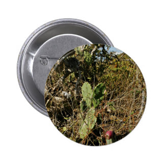 Prickly pear cactus buttons