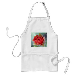 Prickly Pear Cactus Flower Aprons