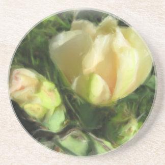 Prickly Pear Cactus Flower Beverage Coasters